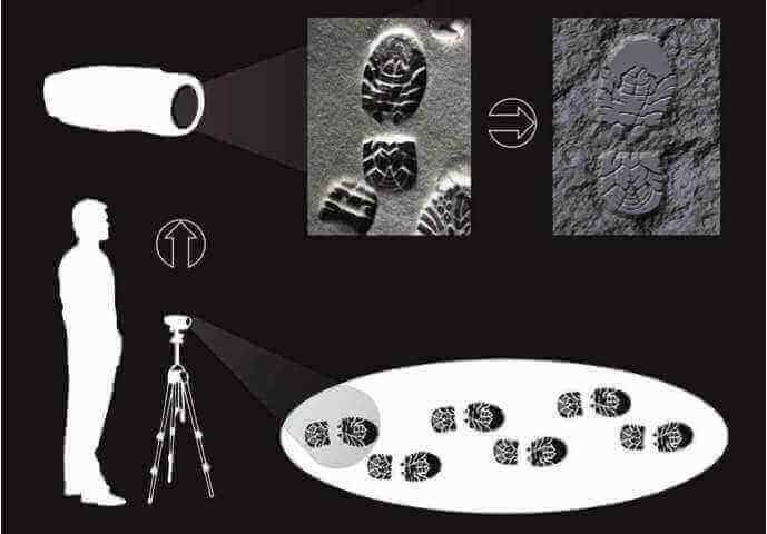 3D forensics