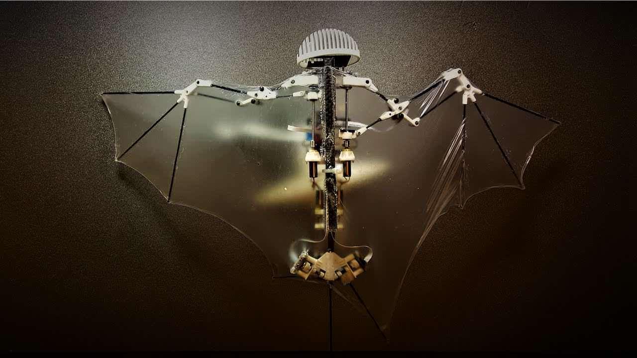 Bat Bot is a 3D Printed Robot Drone that Flies like a Bat | All3DP