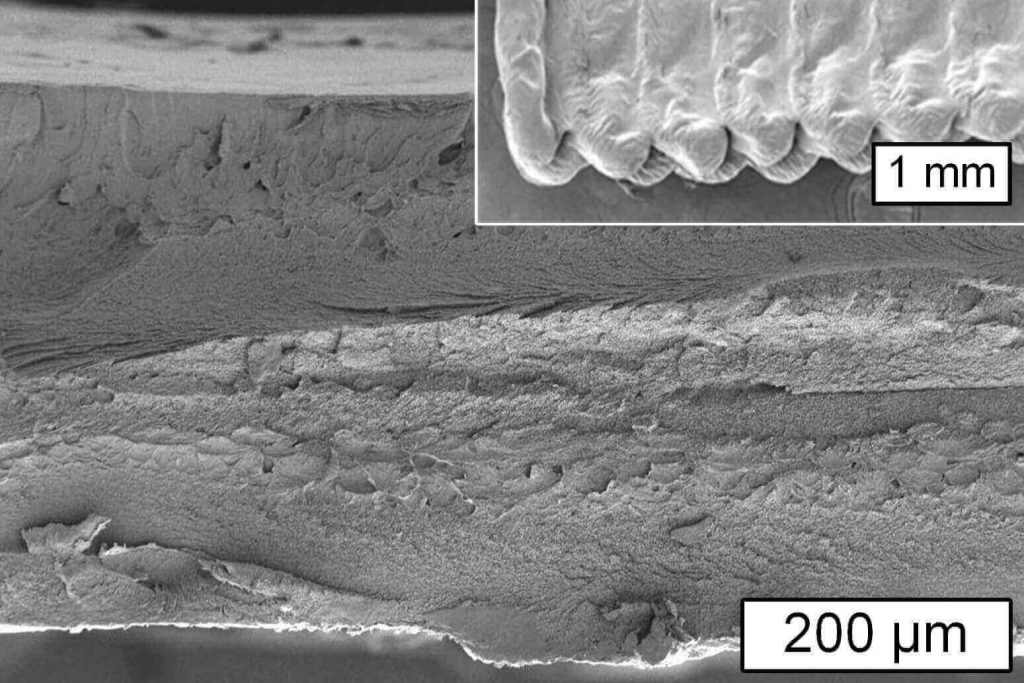 MIT research cellulose 3d printing