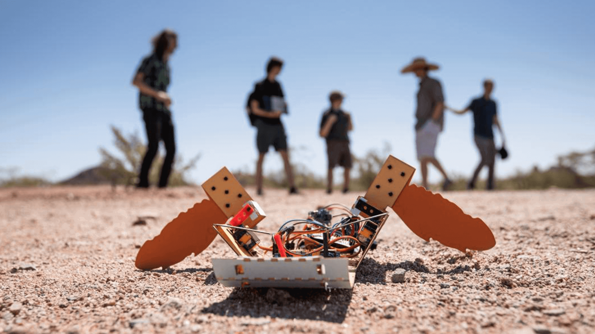 C-Turtle: The Paper Turtle Robot That Can Detect Landmines | All3DP