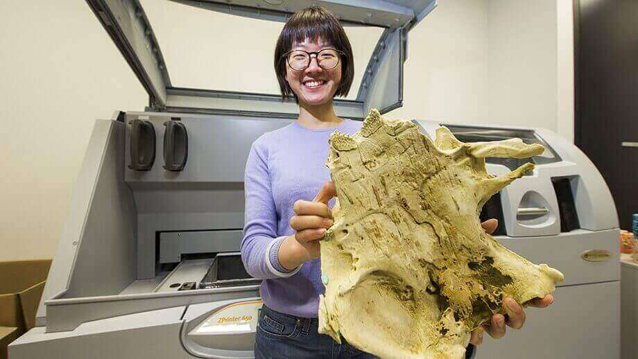 400-Million-Year-Old Fish Fossil Shows Evolutionary Link with Humans | All3DP