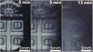 Featured image of Researchers Create 3D Printed Structures That Degrade On Demand