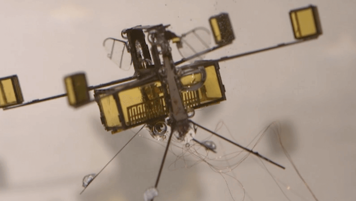 Insect-inspired Hybrid Drone Flies, Swims and Explodes Out of the Water | All3DP