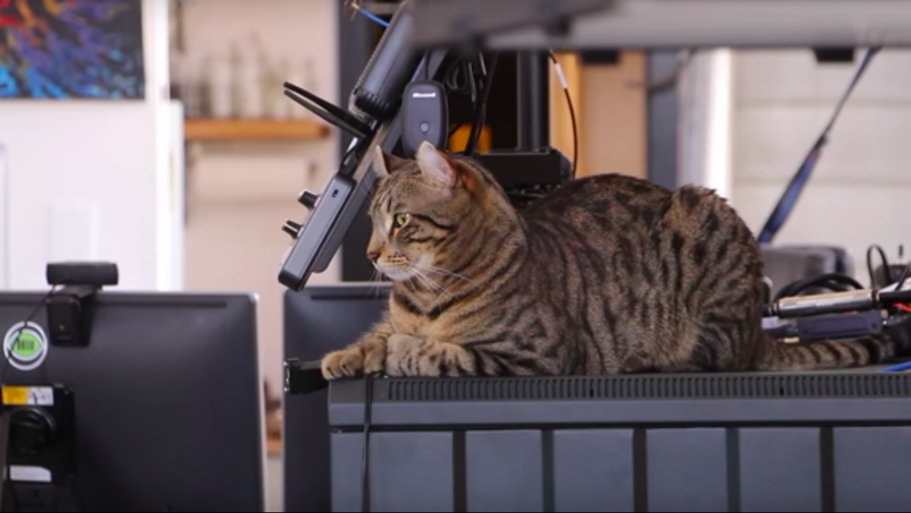 3D Printed Flying Camera Enables Fans to Play with Tuco the Cat | All3DP