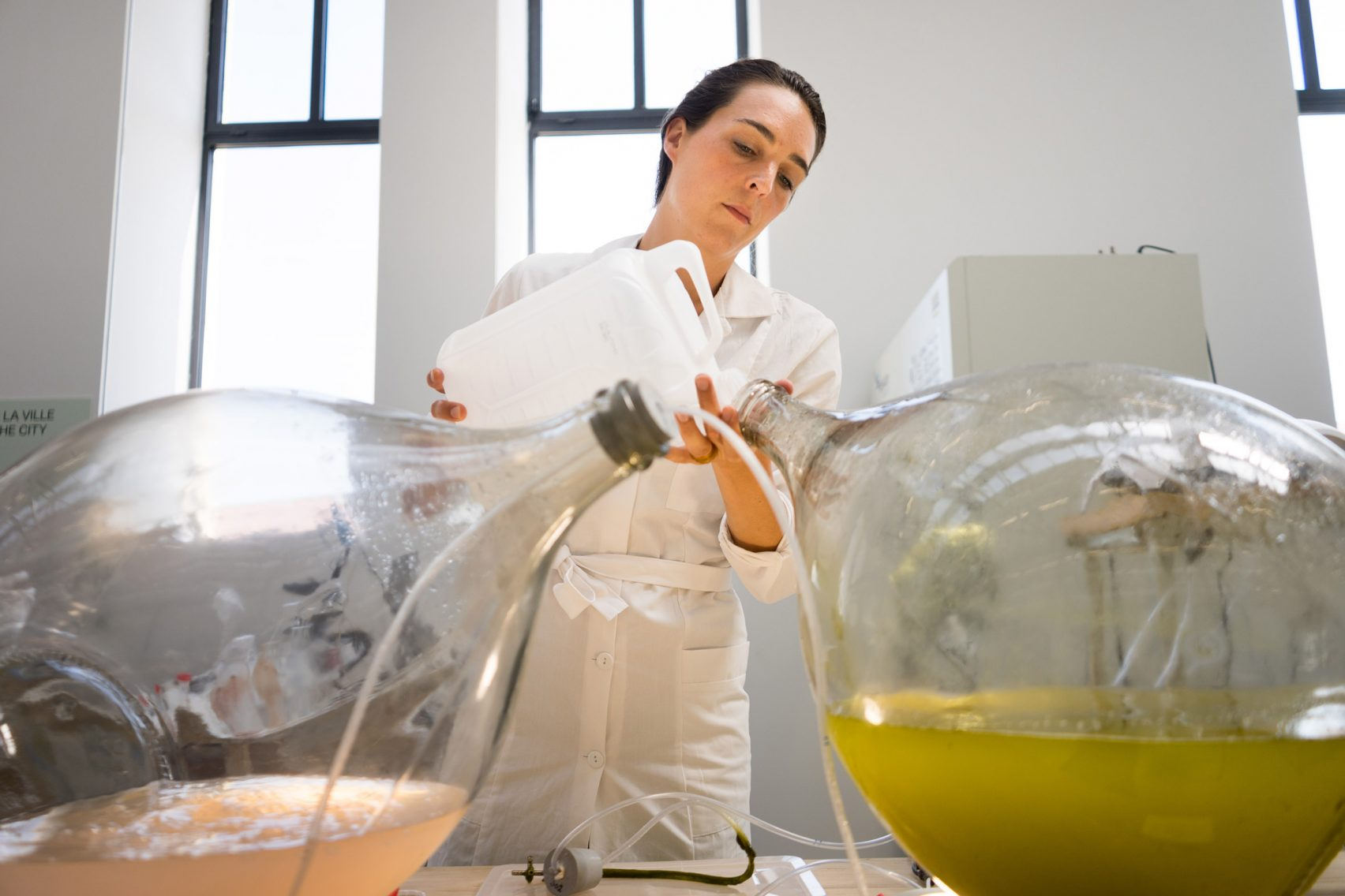 Dutch Designers Transform Algae Into 3D Printable Biopolymer Material | All3DP