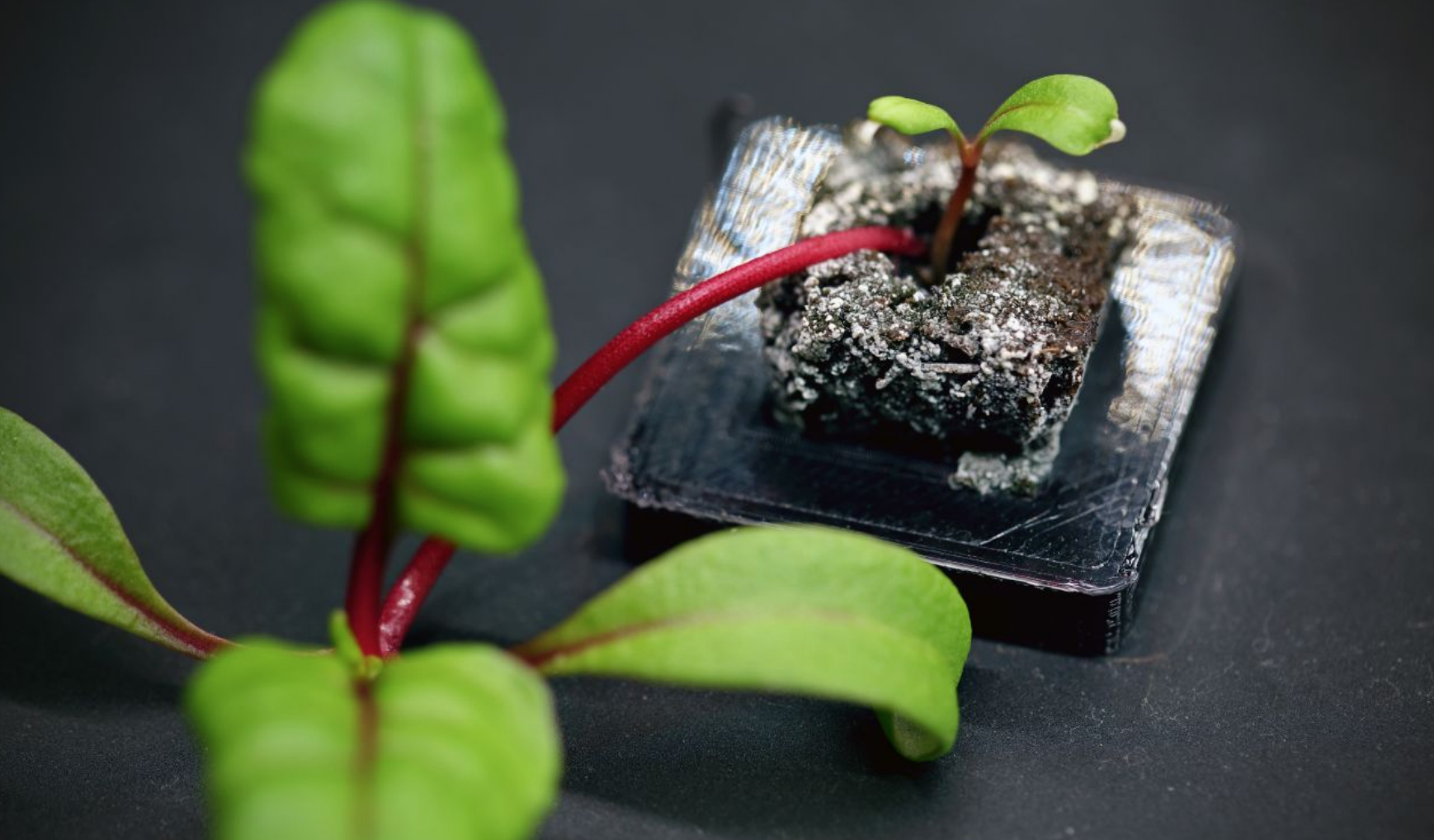 Farmshelf Uses 3D Printed Parts For Smart Indoor Urban Farming | All3DP