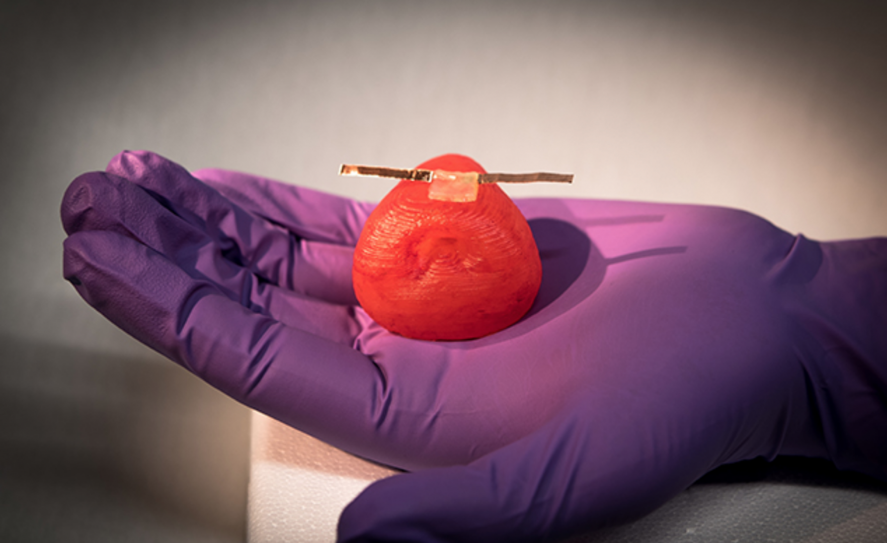 Minnesota Researchers Create 3D Printed Organs for Realistic Surgical Training | All3DP