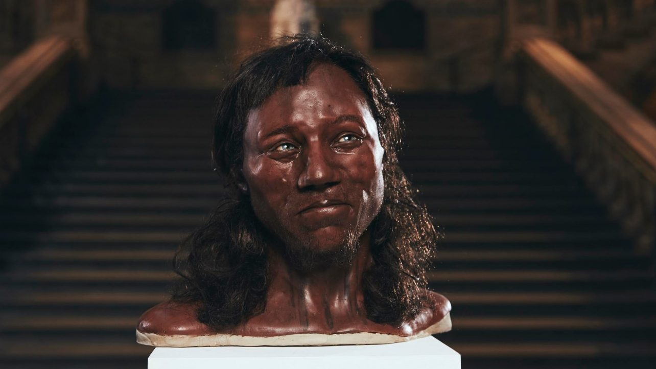 Featured image of Cheddar Man Reconstructed with DNA, 3D Scanning & 3D Printing