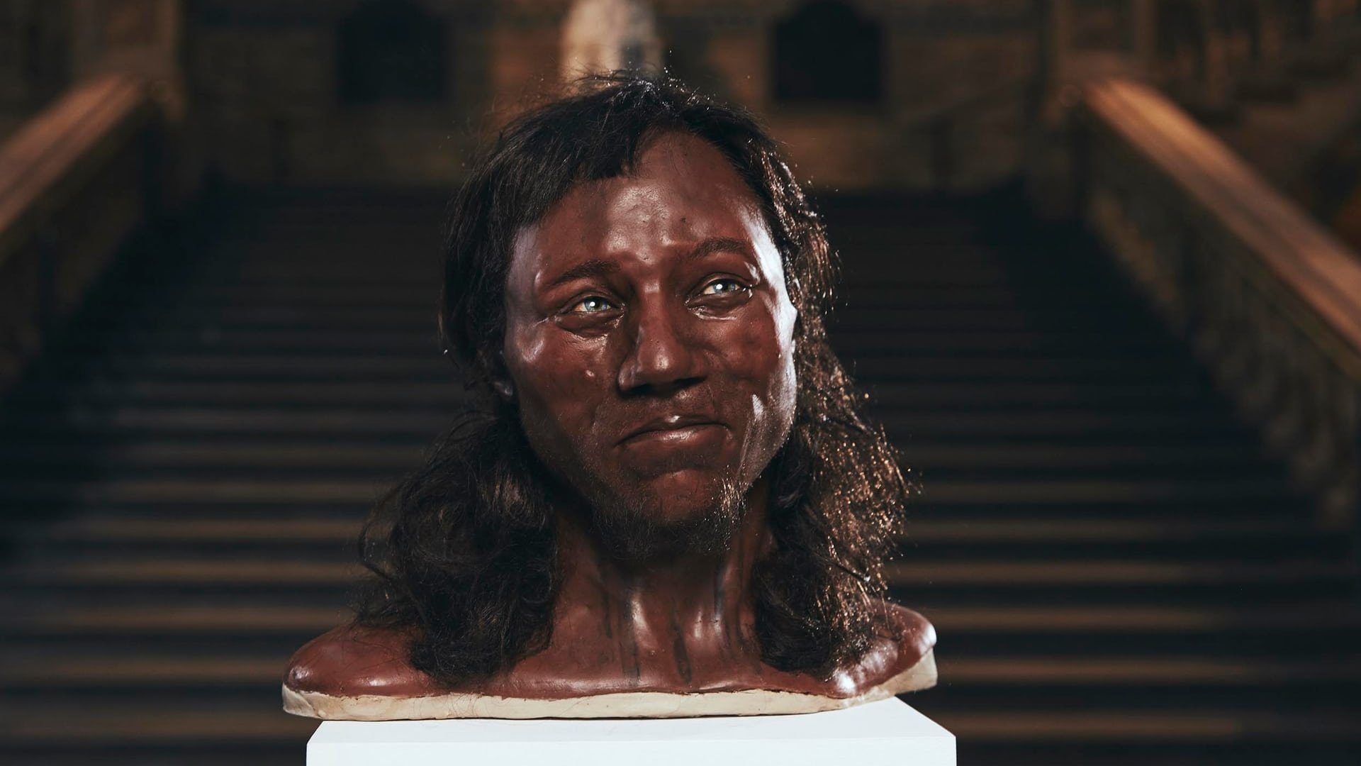 Cheddar Man Reconstructed with DNA, 3D Scanning & 3D Printing | All3DP