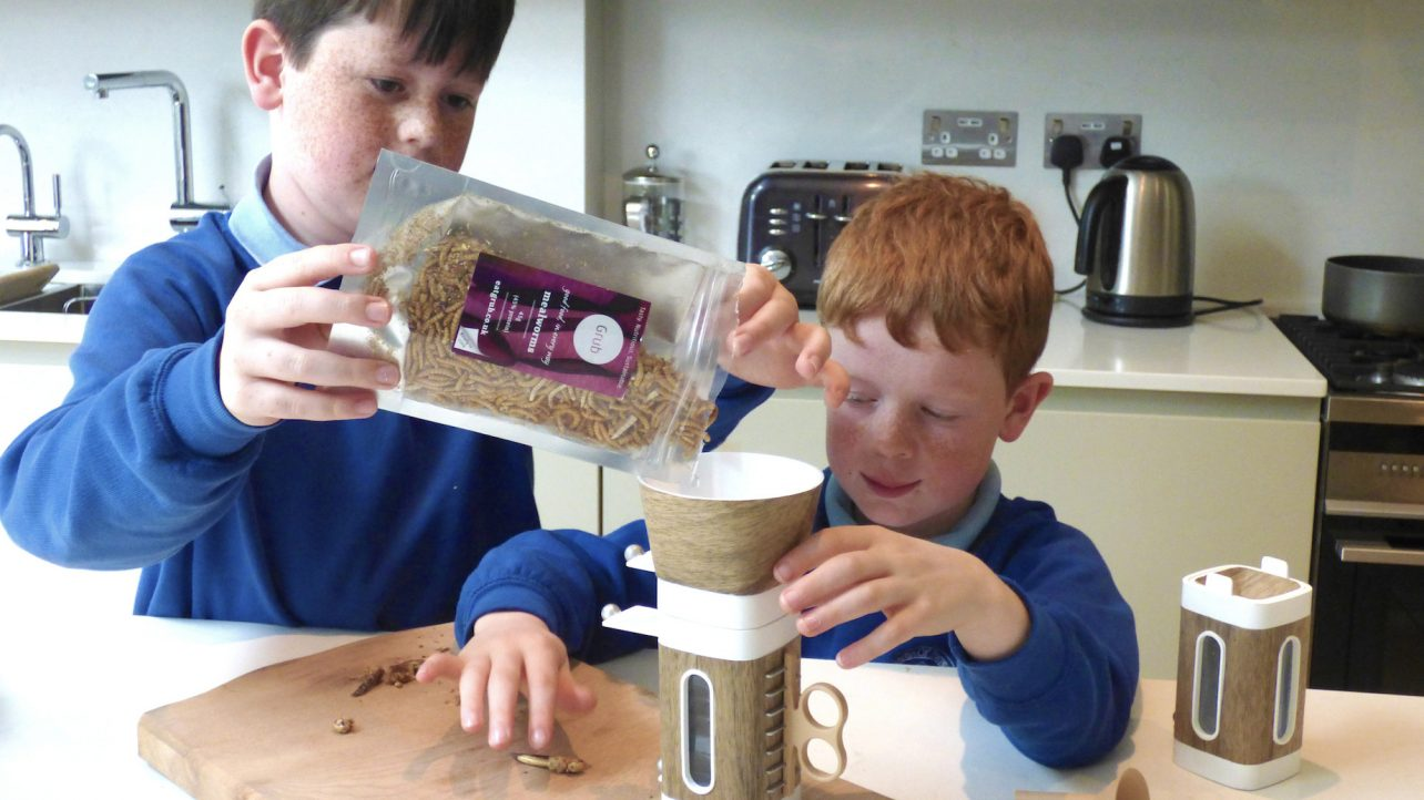Featured image of 3D Printed Tastebugs Challenge Children to Eat Insects