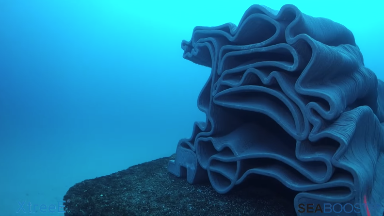 3D Printed Reefs May Offer Hope to Restore Dying Coral Reefs