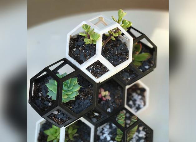 Image of Objets 3D utiles à imprimer en 3D: Plantygon