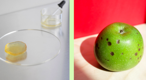"Featured image of Cape Town Designers Reduce Waste by 3D Printing ""Ugly"" Fruit and Veg"