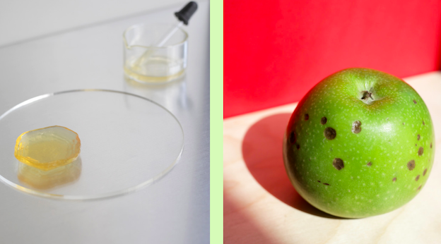 """Featured image of Cape Town Designers Reduce Waste by 3D Printing """"Ugly"""" Fruit and Veg"""