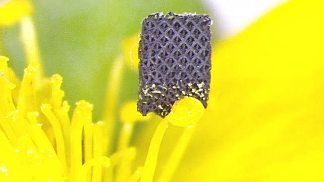Featured image of Researchers Develop 3D Printing Technique for World's Strongest Material