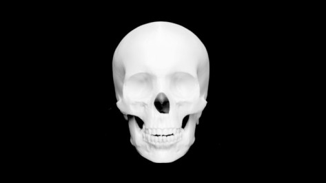 Featured image of 3D Printed Skull – 10 Great Curated Models to 3D Print