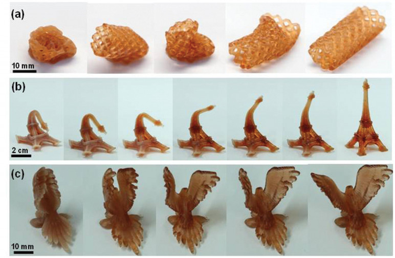 3D printed objects made with resin containing memory polymers.