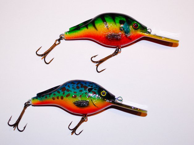 Beautifully painted crankbait.