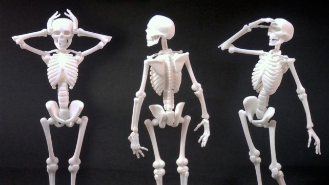 Featured image of 3D Printed Skeleton – Best Curated Models to 3D Print