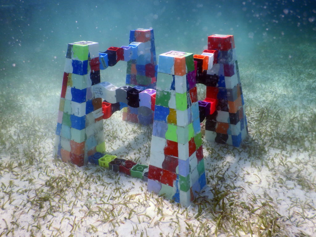 3D Printed Coral Reefs – 4 Most Promising Projects | All3DP