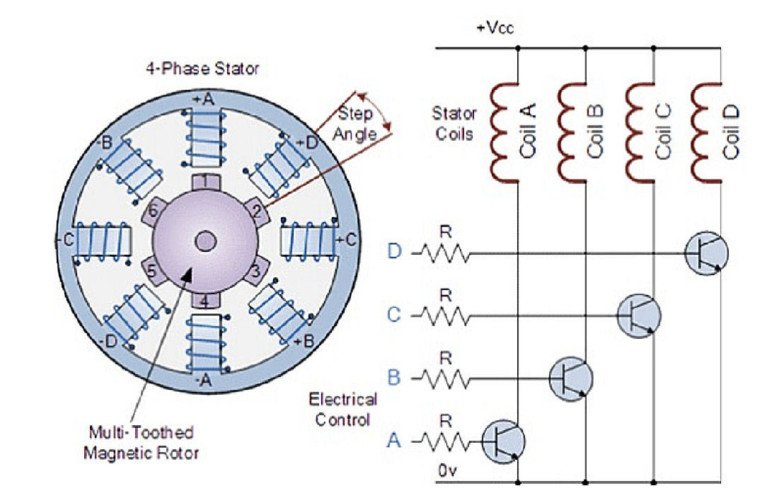 A diagram of a simplified stepper motor.