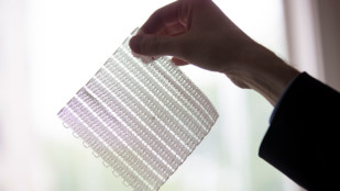 Featured image of MIT Engineers 3D Print Flexible Mesh to Support Healing of Soft Tissues
