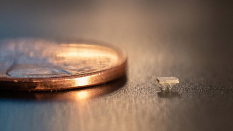 Featured image of These 3D Printed Micro-Bristle-Bots Move by Harnessing Vibrations