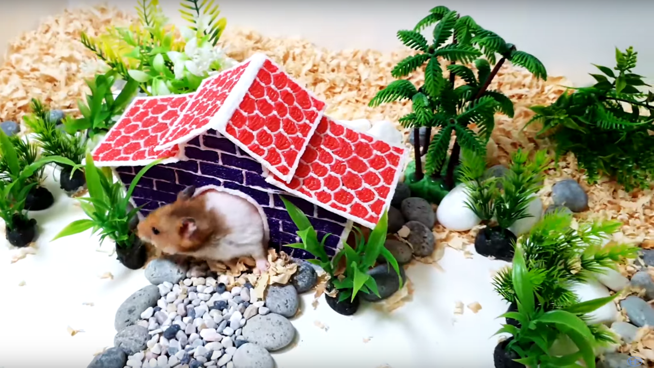 How to Draw a House for Your Hamster with a 3D Pen | All3DP
